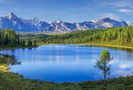 The Business Case for Implementing Data Lake